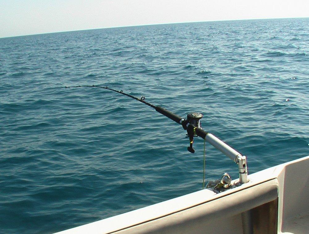 Portacanne da barca foro 40 5 portacanne da barca utile for Barca a vapore per barche da pesca